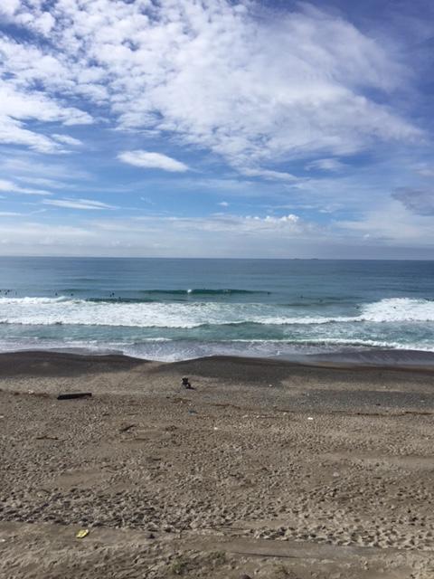 【サーフィン】静岡浜岡 極上ファンウェーブ!いい波でした!