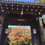 【実相院】秋の京都 床もみじが綺麗でした