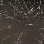 【伊豆の国市花火大会】きにゃんね大仁夏祭りの花火は圧巻でした