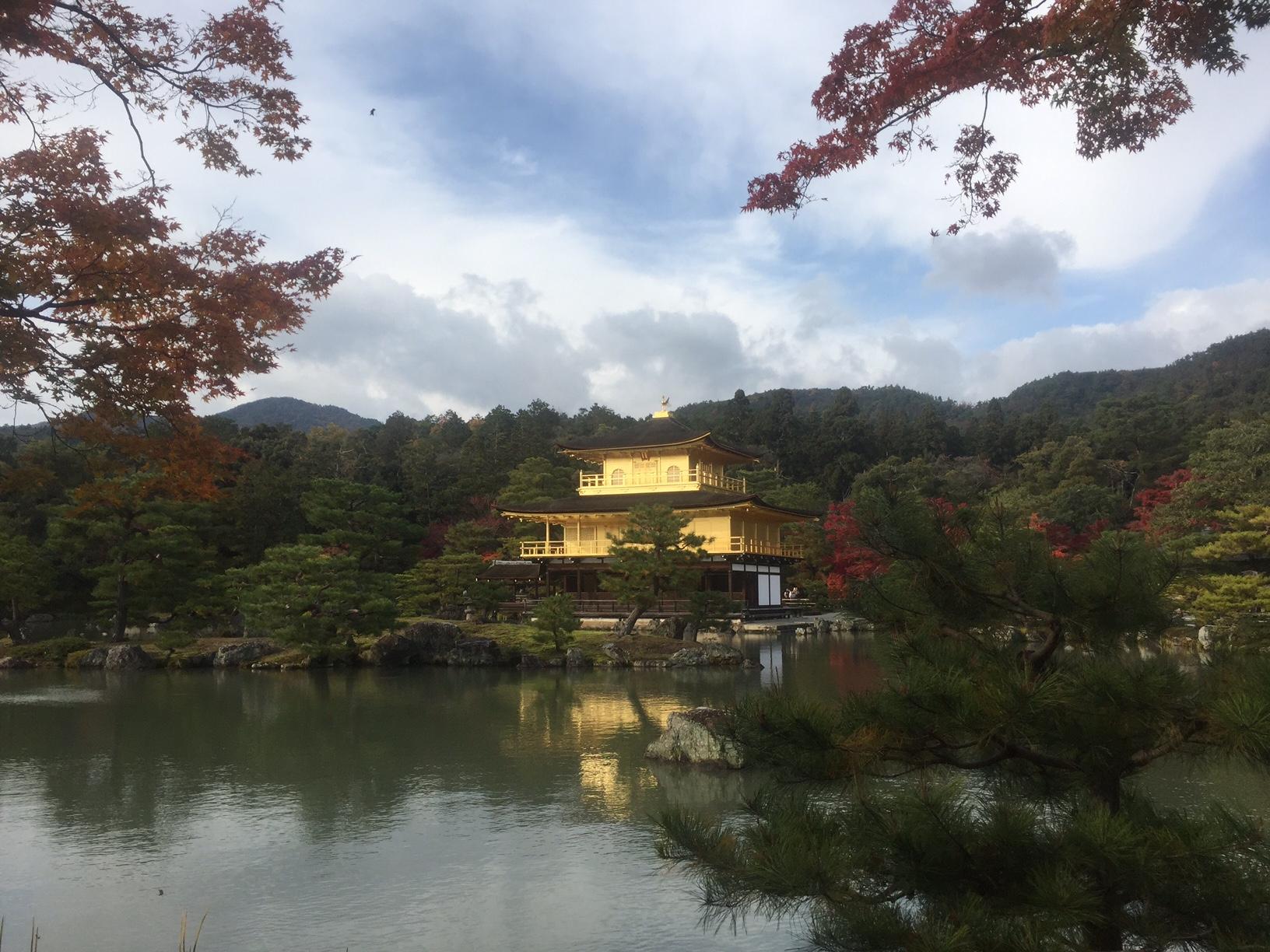 【近畿・関西旅行】秋の京都で紅葉を味わう!金閣寺と仁和寺の紅葉スポットは見事!
