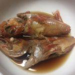 【海の幸・カサゴ】今が脂が乗って旬!!カサゴの美味しい食べ方!捌き方!